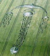 ison cropcircle