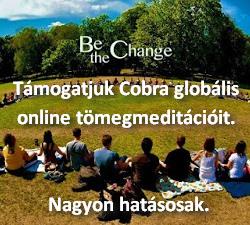Cobra online tömegmeditációi
